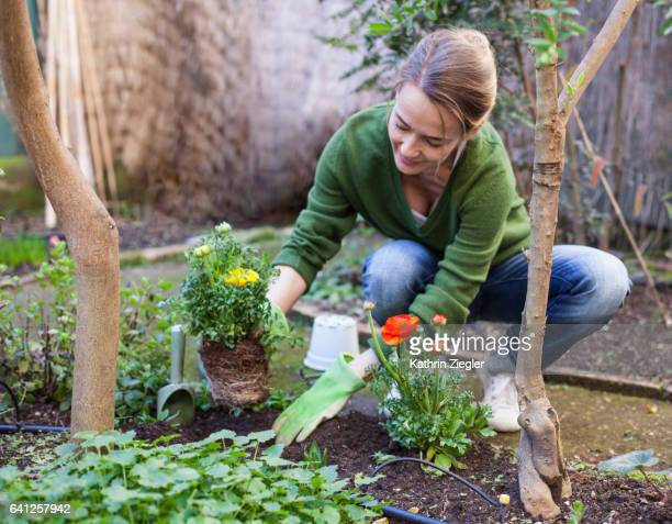 woman planting flowers in her backyard, rome, italy - tuinieren stockfoto's en -beelden