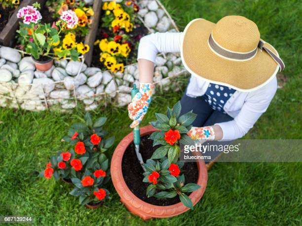 Woman planting flowers