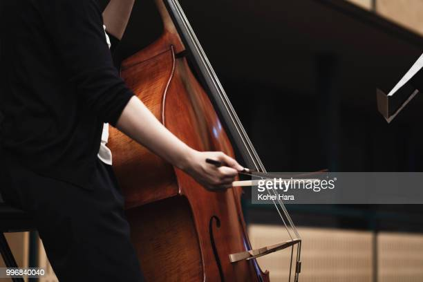 woman playing a contrabass at concert hall in rehearsal - stringed instrument stock pictures, royalty-free photos & images