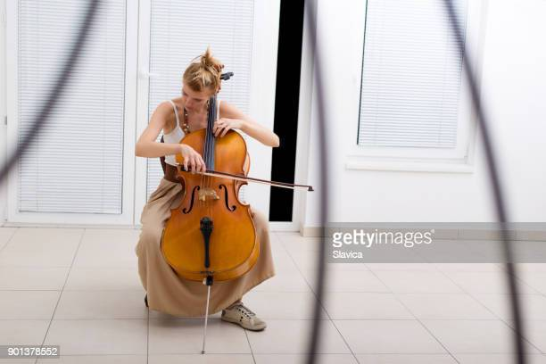 woman playing cello - cello stock pictures, royalty-free photos & images