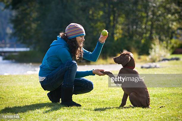 woman playing with and training puppy to shake hands - obedience training stock pictures, royalty-free photos & images