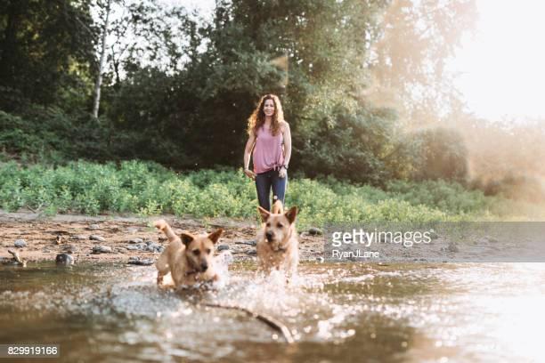 frau spielt mit hunden am fluss - stab stock-fotos und bilder