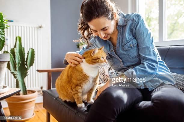 woman playing with her cat at home - alleen één mid volwassen vrouw stockfoto's en -beelden