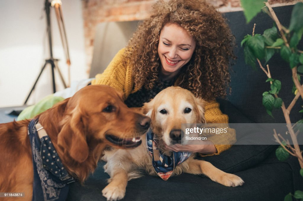 Woman playing with her dogs : Stock Photo