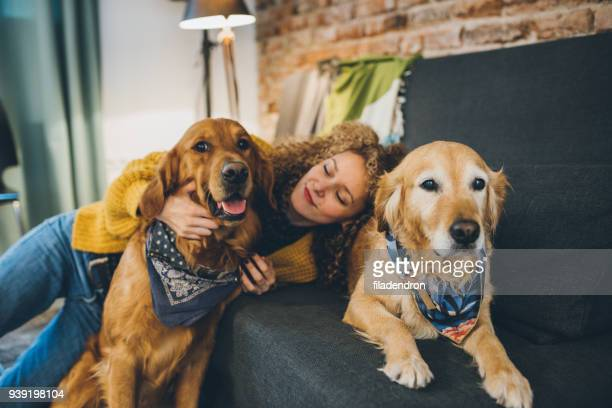 woman playing with her dogs - two animals stock pictures, royalty-free photos & images