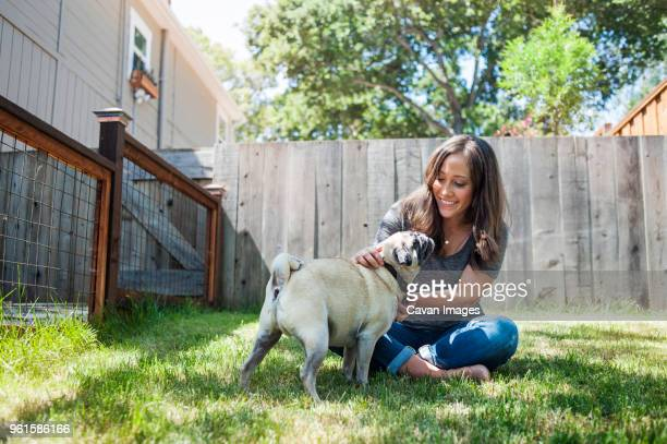 woman playing with pug while sitting on grassy field in backyard - canine stock pictures, royalty-free photos & images