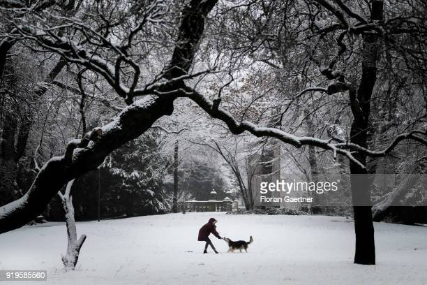 A woman plays with her dog on the snowcovered Maximiliansplatz on February 17 2018 in Munich Germany