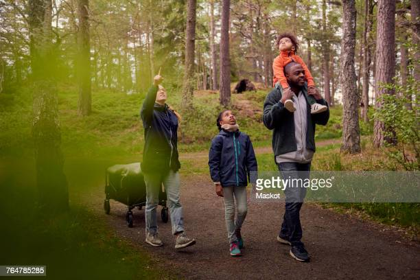 Woman pointing up to family while hiking in forest