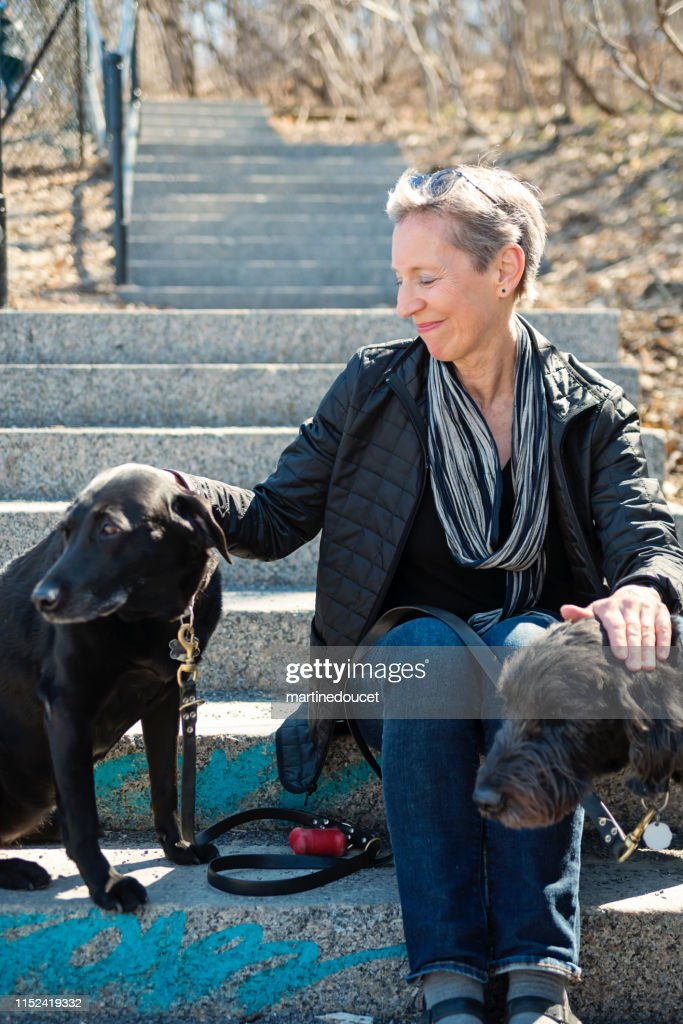60+ woman portrait with her dogs in city park. : Stock Photo