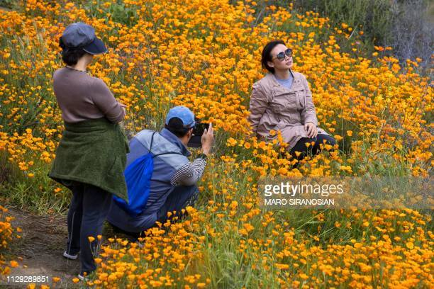 A woman poses for a photo among poppies in bloom on the hills of Walker Canyon in Lake Elsinore California on March 8 2019