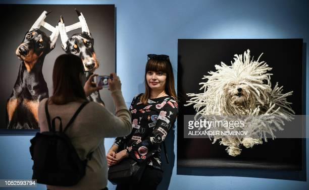Woman poses in front of the photographs 'Cosmetic Surgery' and 'Fying Mop' by Tim Flach, a British photographer who specialises in studio photography...