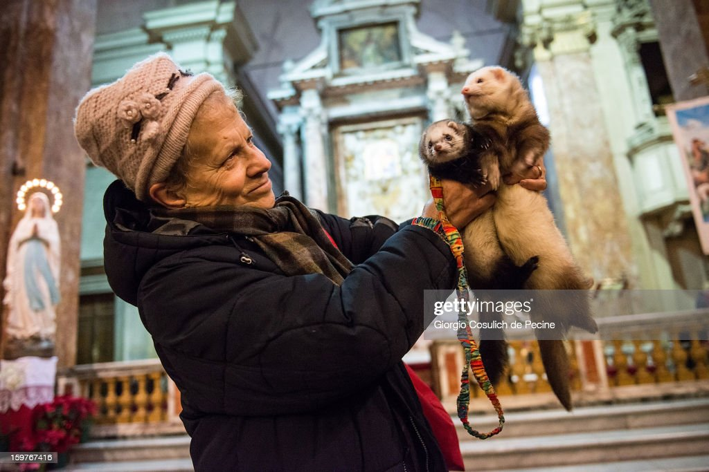 A woman poses with her ferrets prior to a traditional mass for the blessing of animals at the Sant'Eusebio church on January 20, 2013 in Rome, Italy. Every year during the feast of St. Anthony the Abbot animals are blessed in countries around the world.