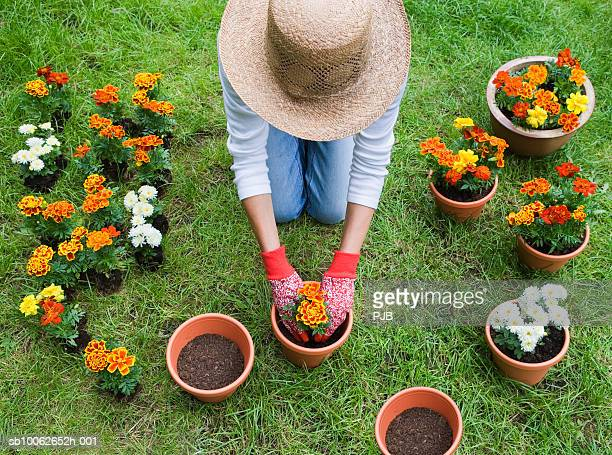 Woman potting plants in garden