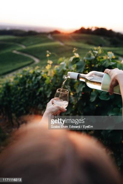 woman pouring wine in glass against landscape - baden württemberg stock pictures, royalty-free photos & images