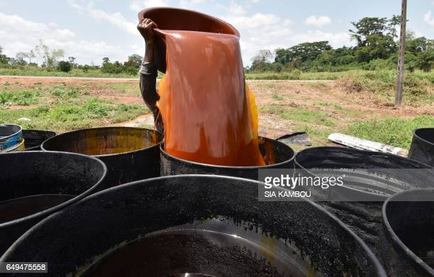 A woman pours a container of palm oil into a barrel at an artisinal workshop on March 7 2017 in Divo Ivory Coast is the world's leading producer of...