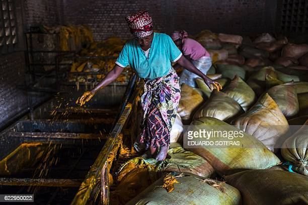 A woman pours sacks containing palm oil at the Crystal Soap factory in Butembo on November 12 2016 Struggling with the lack of electricity in the...