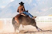 https://www.istockphoto.com/photo/woman-practicing-barrel-racing-in-arena-on-ranch-ranch-gm991154700-268609188
