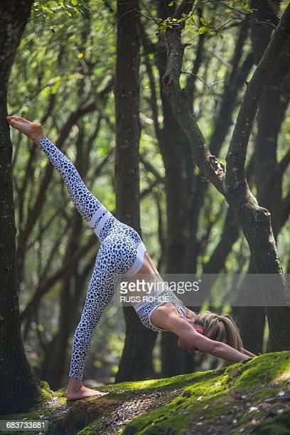 woman practising yoga in forest - junge frau strumpfhose stock-fotos und bilder