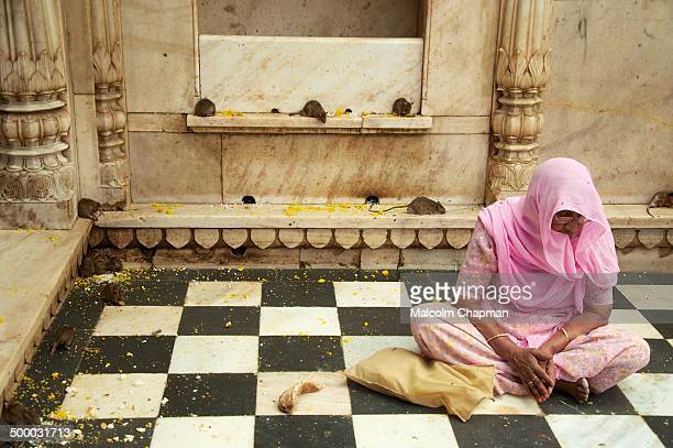 "Woman prays at Karni Mata, ""Rat Temple"", Deshnoke, Bikaner, Rajasthan, India"
