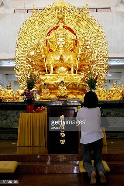 A woman prays to a statue of Buddha at a Chinese temple in Kuala Lumpur 23 February 2005 on the fifteenth and last day of the Chinese New Year...