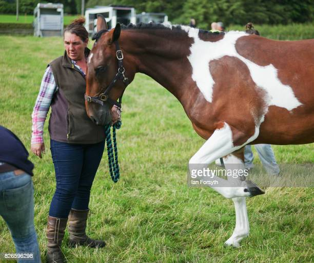 Woman prepares her horse during the Osmotherley Country Show on August 5, 2017 in Osmotherley, England. The annual show hosts pony, cattle and sheep...