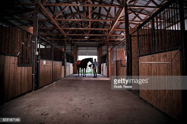 a woman prepares to saddle her horse in a stable - robb reece stock pictures, royalty-free photos & images