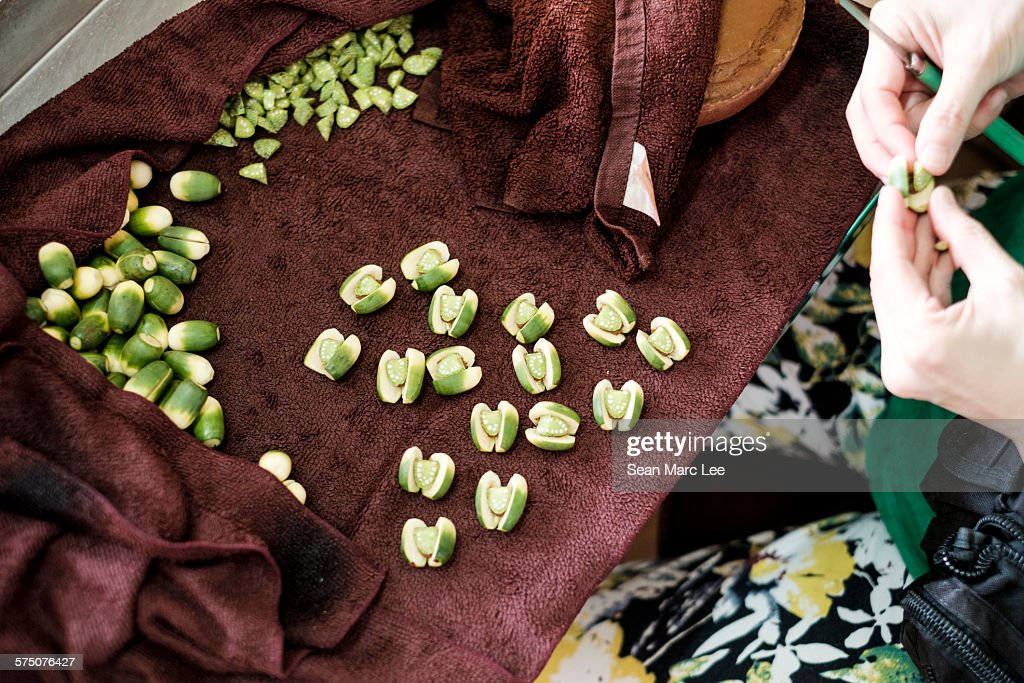 A Woman Preparing Betel Nut In Taipei Taiwan Stock Photo - Getty Images