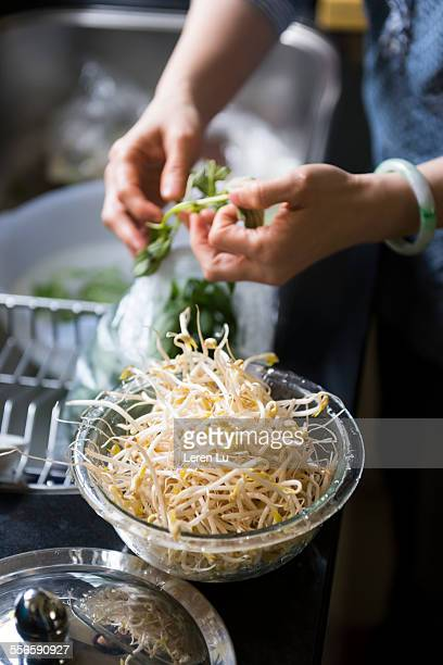 woman preparing food in kitchen - bean sprout stock pictures, royalty-free photos & images