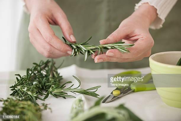 Woman preparing herbs
