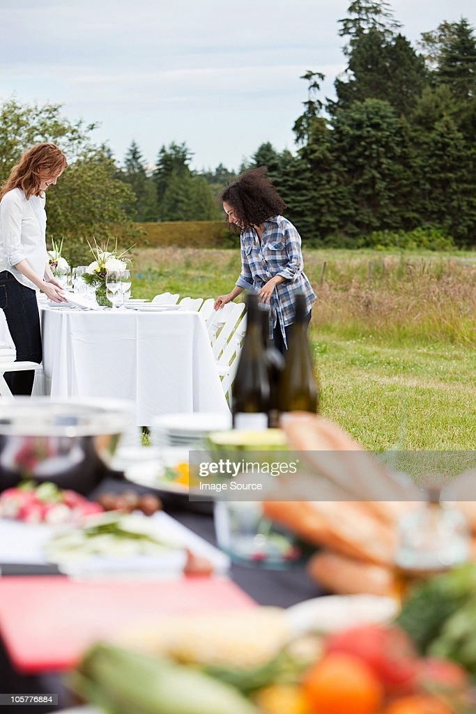Woman preparing table for dinner party on farm : Stock Photo