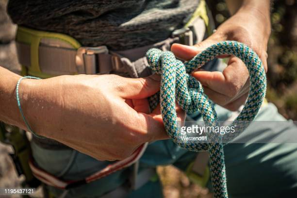 woman preparing to climb, checking rope, figure eight knot - 結び目 ストックフォトと画像