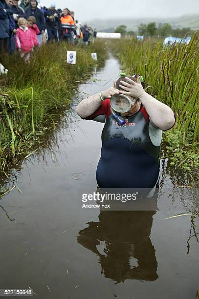woman preparing to snorkel in the world bog snorkeling championships - funny fat women stock pictures, royalty-free photos & images