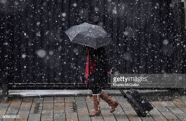 A woman pulling a suitcase makes her way through heavy snow on January 16 2018 in Belfast Northern Ireland The Met Office has placed an amber weather...