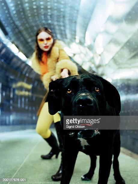 woman pulling on dog's lead in tunnel, focus on dog - カラーサングラス ストックフォトと画像