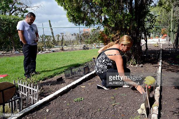 A woman puts flowers on her dog's grave at the pet cemetery in Corregidora State of Queretaro Mexico on November 1 the day before the commemoration...