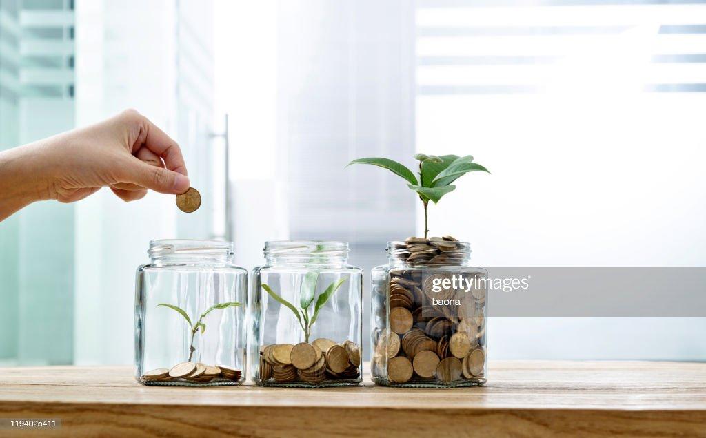 Frau legt Münze in das Glas mit Pflanze : Stock-Foto