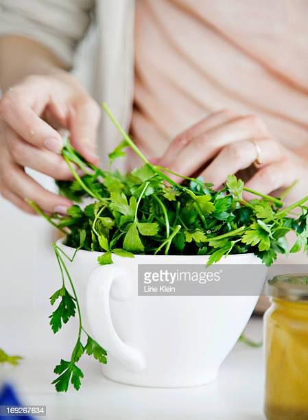 woman putting fresh herbs in bowl - peterselie stockfoto's en -beelden