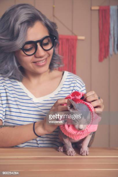 Woman putting pink pullover on her Sphynx cat at home
