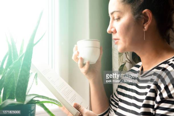 woman reading book near window, odunpazar, turkey - ipek morel stock pictures, royalty-free photos & images
