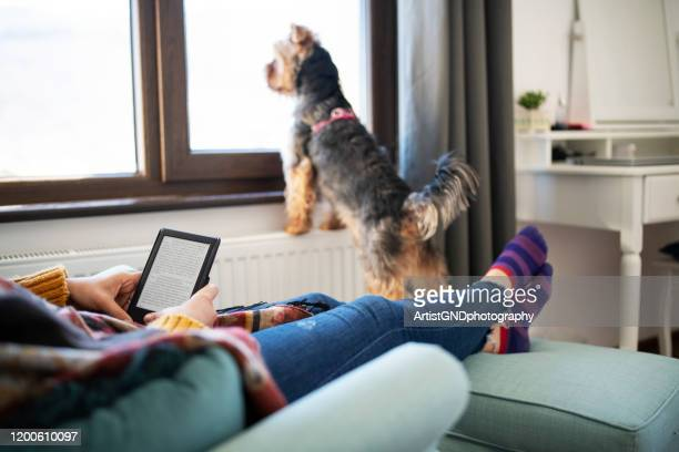 woman reading e-book at home. - e reader stock pictures, royalty-free photos & images