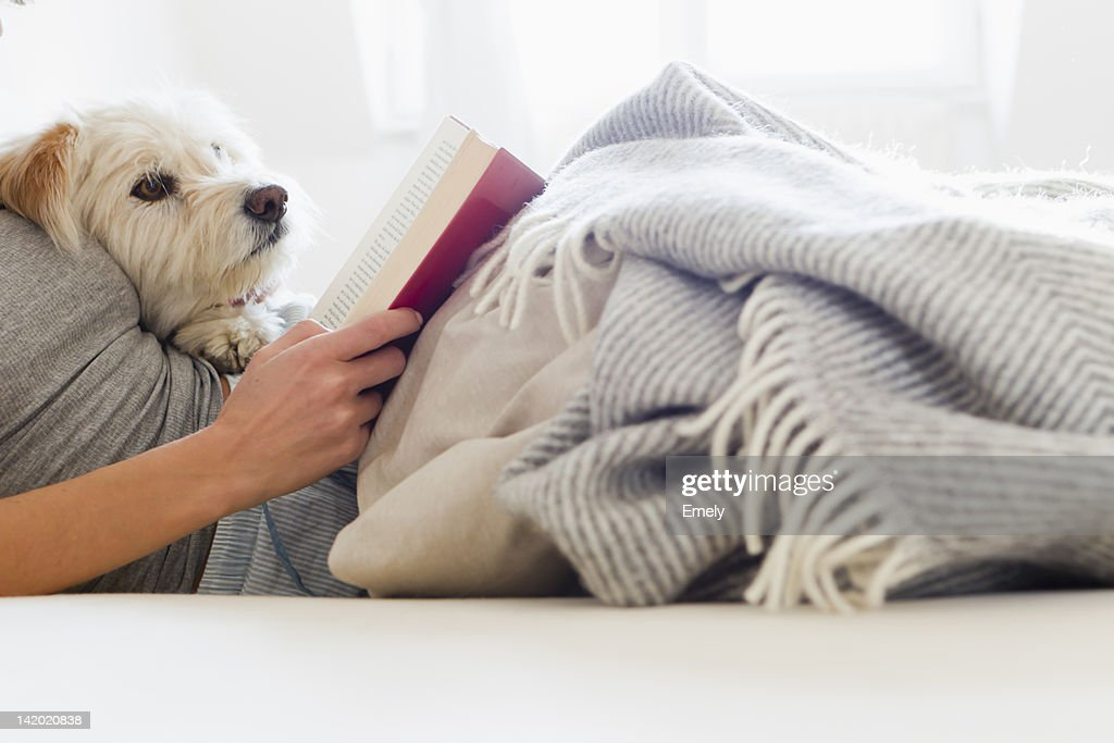 Woman reading in bed with dog : Stock Photo