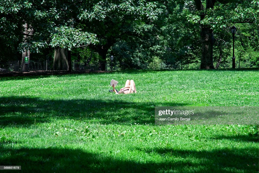 Woman reading in Central Park, New York : Stock Photo