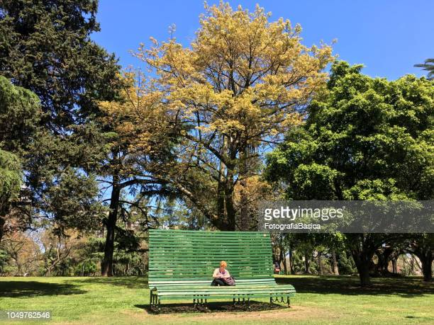 Woman reading in huge park bench