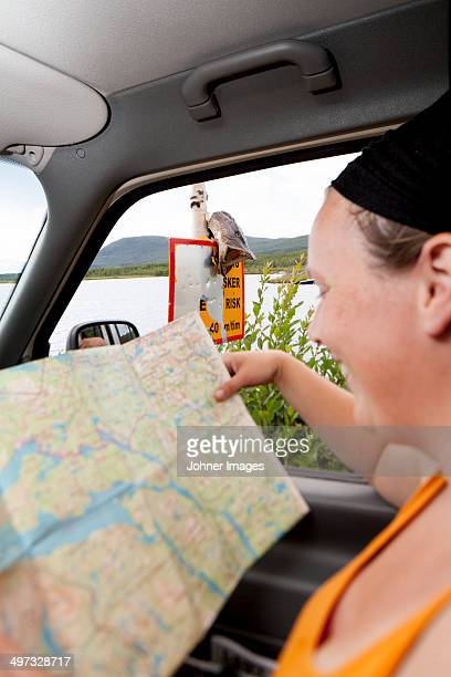 Woman reading map in car, Sweden