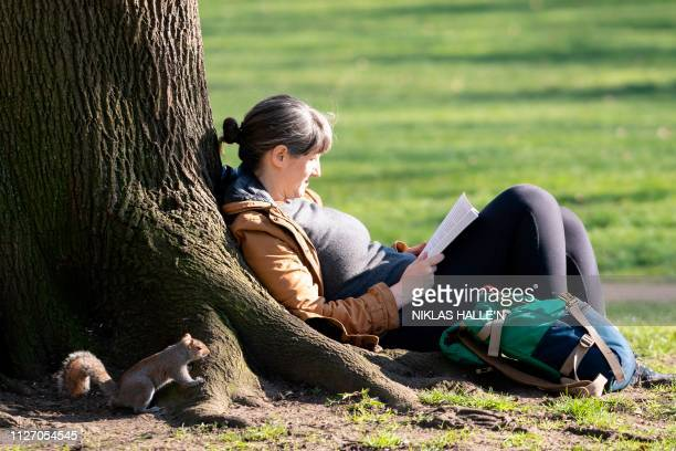 Woman reads a book as a squirrel looks on inquisitively in Green Park in London as the capital basks in sunshine on February 24, 2019.