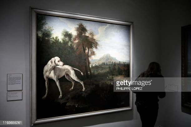 Woman reads informations next to a painting during a visit of the museum of the royal domain of Marly in Marly-le-Roi on January 14, 2020. - The...