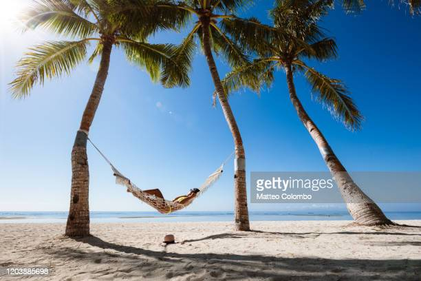 woman relaxing in a hammock, panglao, bohol, philippines - vacanze foto e immagini stock