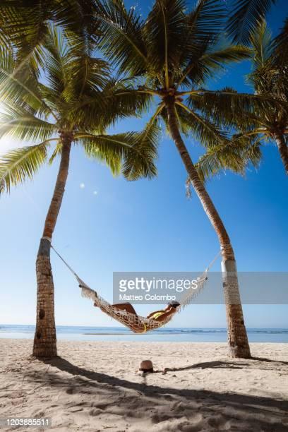 woman relaxing in a hammock, panglao, philippines - paisajes de filipinas fotografías e imágenes de stock