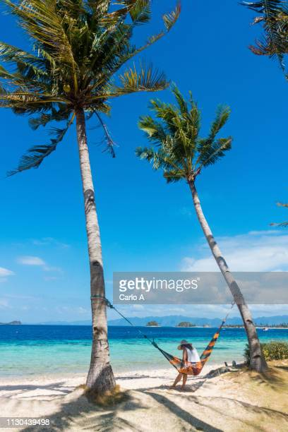 woman relaxing on hammock on tropical beach - cocotier photos et images de collection