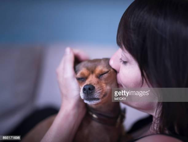 woman relaxing on sofa, kissing puppy - pinscher nano foto e immagini stock